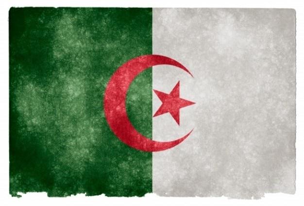Algieria grunge flag