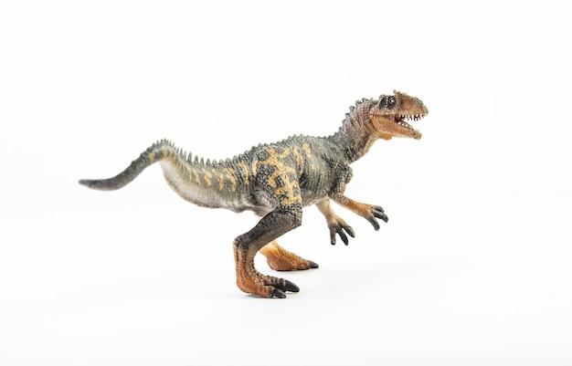 Allosaurus, dinozaur na białym tle