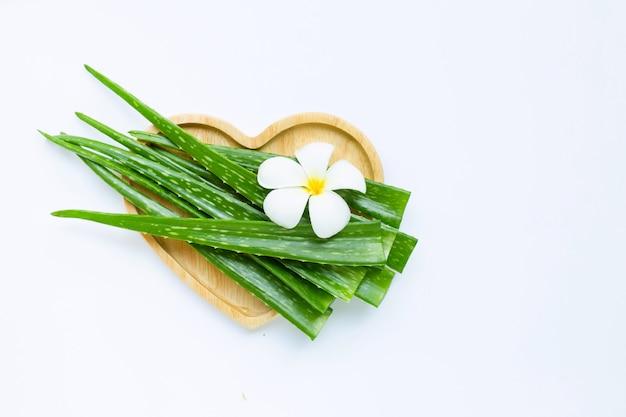 Aloe vera to popularna roślina lecznicza dla zdrowia i urody, z kwiatem plumeria na białym tle
