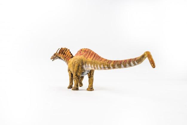 Amargasaurus, dinosaur na białym tle