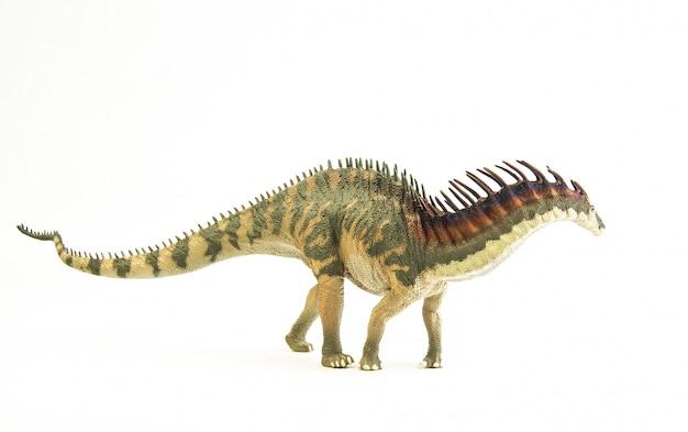 Amargasaurus, dinozaur.