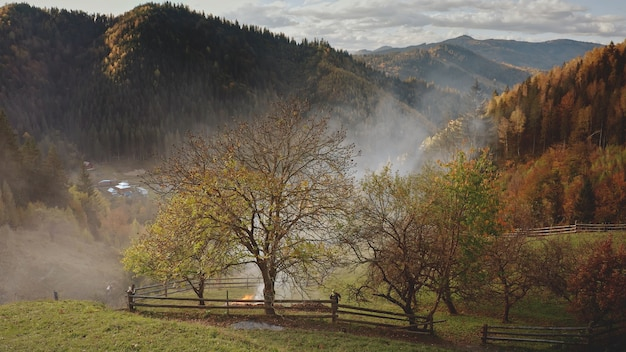 Antena chmur mgły nad polami w górskiej wiosce, w dolinie leśnej w domkach w zadymionej mgle