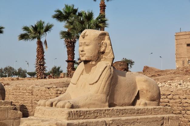 Antyczna luxor świątynia w luxor mieście, egipt