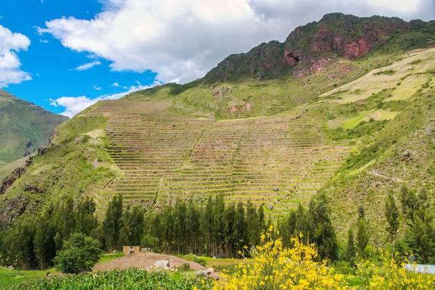 Antyczni inków kółkowi tarasy w świętej urubamba dolinie incas, peru
