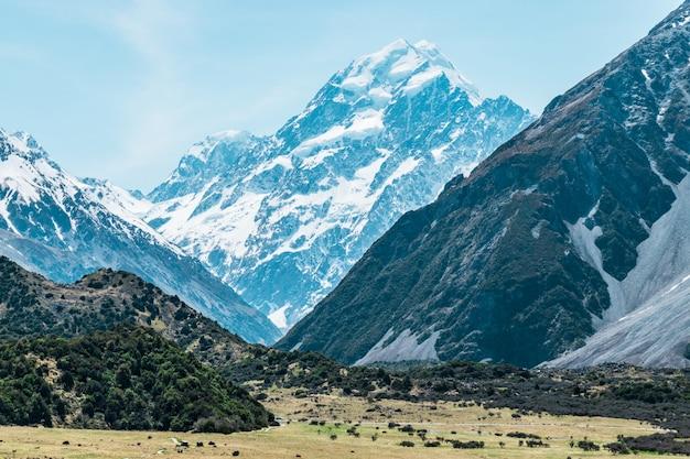 Aoraki / mount cook, najwyższa góra nowej zelandii