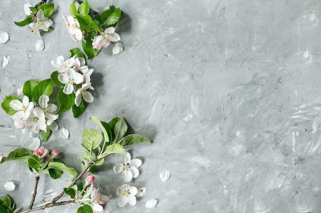 Apletree kwiaty na tle pastelowej szarości