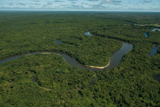 Aquidauana, mato grosso do sul, brazylia: widok z lotu ptaka na rio negro (czarna rzeka) na bagnach brazylijskich, znany jako pantanal