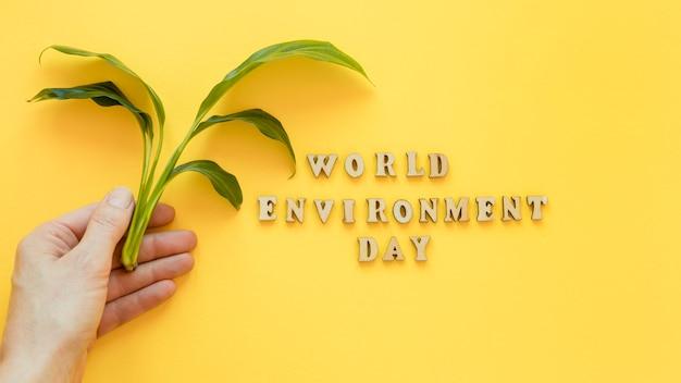 Aranżacja światowego dnia środowiska z drewnianym napisem
