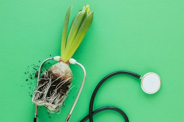 Aranżacja światowego dnia środowiska z rośliną i stetoskopem