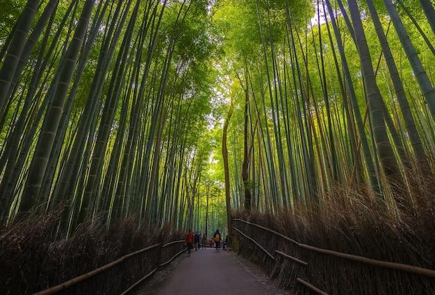 Arashiyama w kioto, japonia
