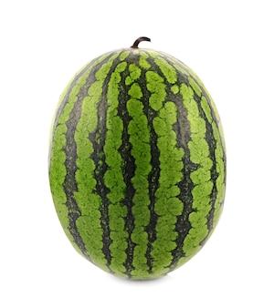 Arbuz zielony na białym