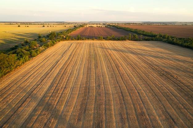 Areal widok pól uprawnych w słoneczny letni dzień