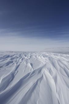 Arktyczny krajobraz zimowy smagany wiatrem