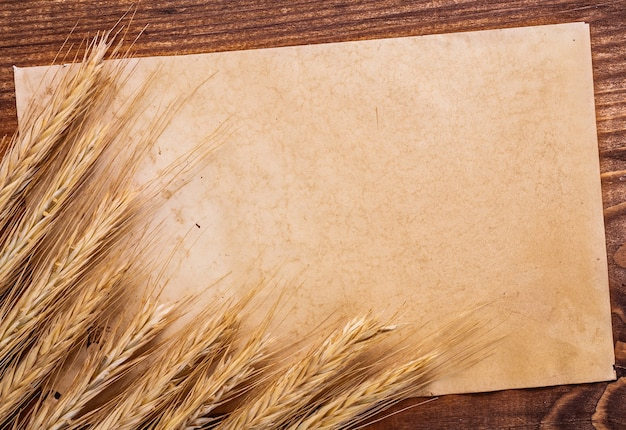 Arkusz starego papieru z uszami