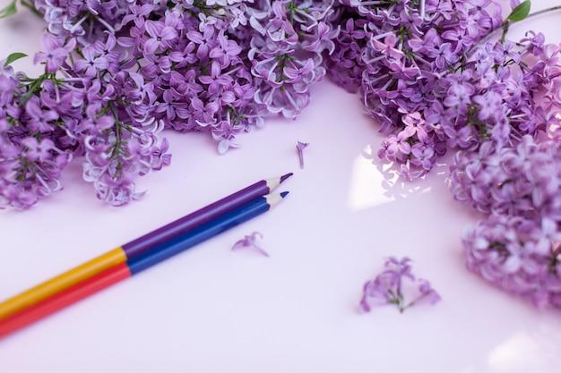 Arkusze białego czystego papieru i wiosennych kwiatów bzu na kolorowym tle