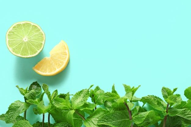 Aromatyczna mięta i owoce cytrusowe na kolorowej powierzchni