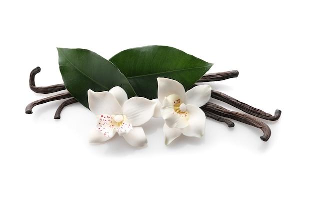 Aromatyczne laski wanilii na białym