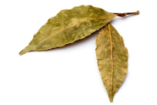 Aromatyczne liście laurowe na białym tle.