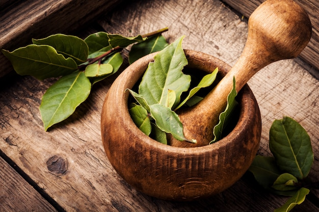 Aromatyczne liście laurowe