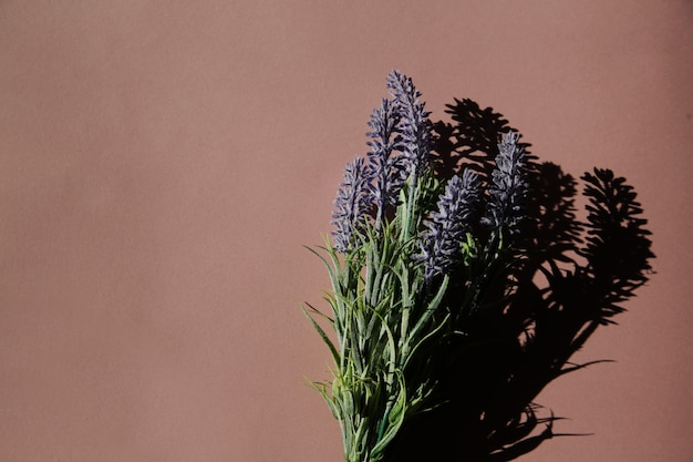 Aromatyczne perfumy i lawenda