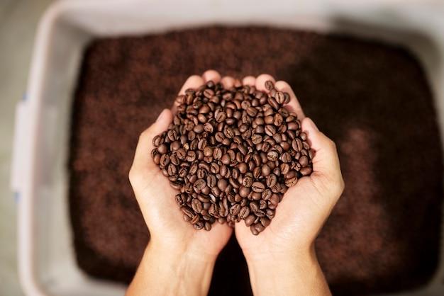 Aromatyczne ziarna kawy w dłoni