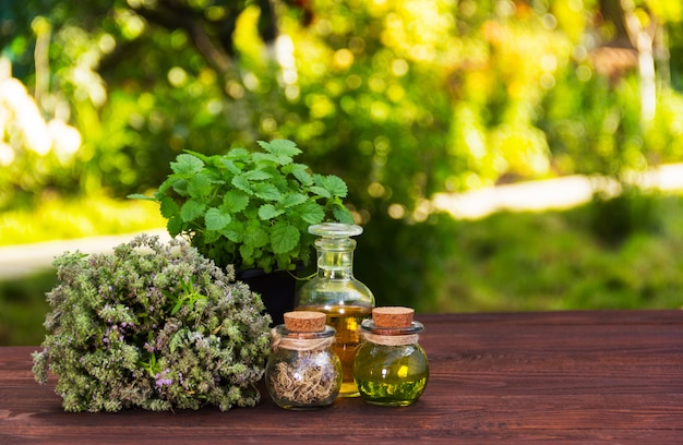Aromatyczne zioła i olejki eteryczne. kosmetyki naturalne. leki naturalne. mięta pieprzowa i pachnący tymianek