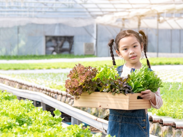 Asain mała śliczna dziewczyna trzyma kosz z warzywami przy hydroponic zielonym domem. ogród dla dzieci i warzyw.