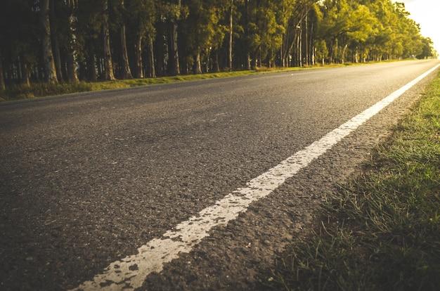 Asfaltowa droga przez wieś w słoneczny letni wieczór