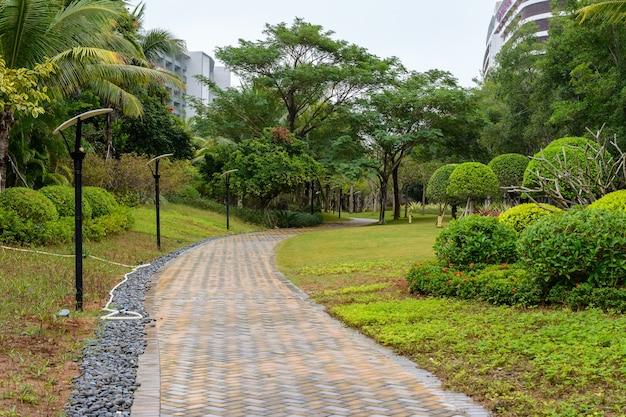 Asfaltowa ścieżka między dwoma hotelami z tropikalną roślinnością. ulica w mieście sanya.