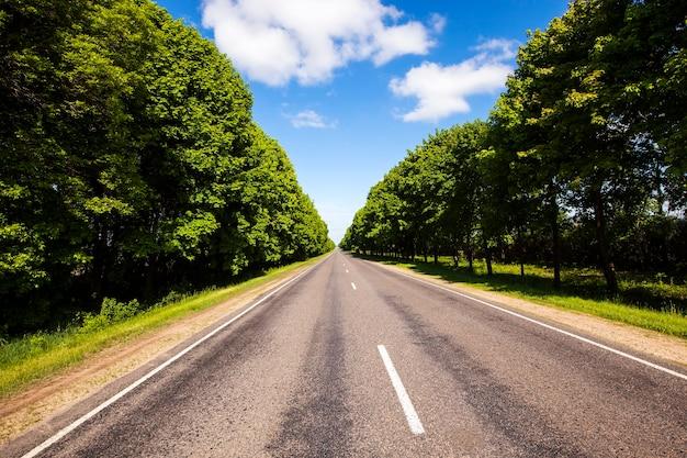 Asfaltowana Droga Do Lata W Roku. Wzdłuż Drogi Rosną Drzewa Premium Zdjęcia