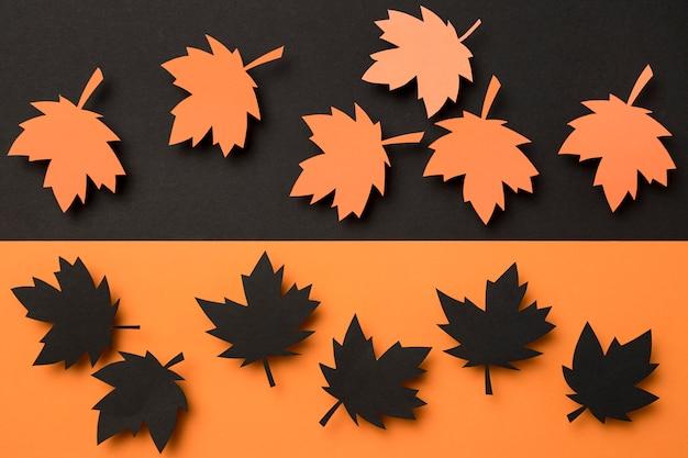 Asortyment jesiennych liści widok z góry
