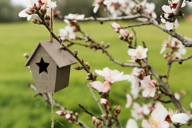 Asortyment mały drewniany dom w drzewie