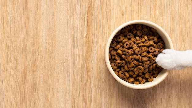 Asortyment martwej karmy dla zwierząt domowych