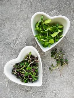 Asortyment mikro zieleni przy betonowym stole, widok z góry. zdrowy tryb życia