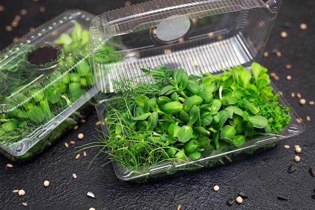 Asortyment mikro-zielenin w pudełku.