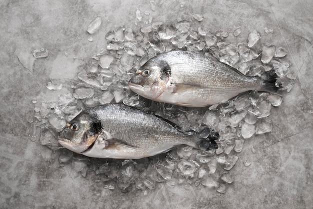 Asortyment pysznych owoców morza leżał płasko