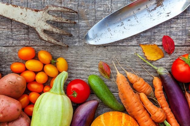 Asortyment różnych świeżych organicznych warzyw i narzędzi ogrodniczych na drewnianym stole w stylu wiejskim. lokalny ogród produkuje czyste jedzenie
