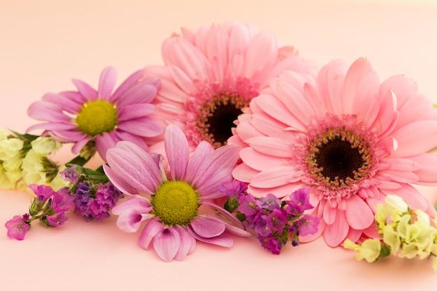 Asortyment z kolorowymi wiosennymi kwiatami