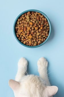 Asortyment żywności dla zwierząt domowych martwa natura