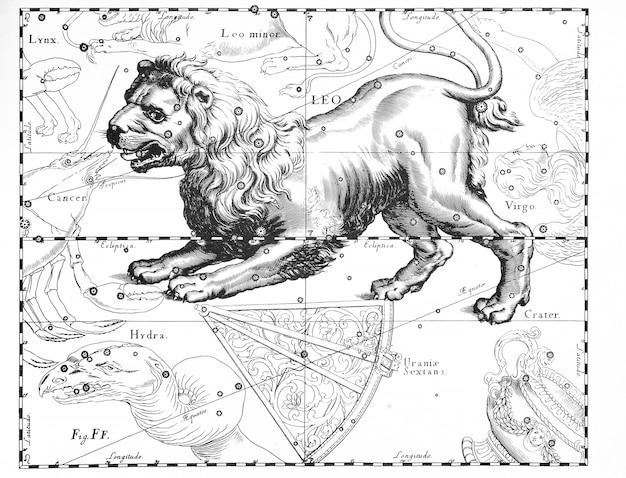 Astronomiczny katalog konstelacji na jasnym tle