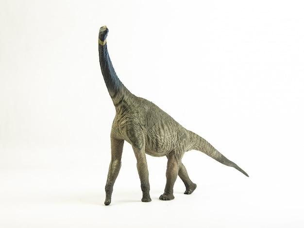 Atlasaurus, dinozaur.
