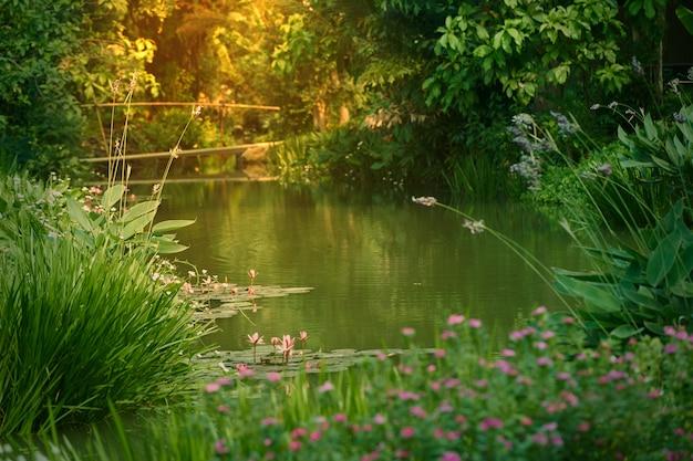 Atmosfera ogrodowa z mostem i strumieniem wody oraz światłem słonecznym