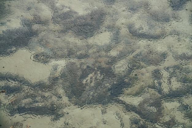 Atmosferyczne tło natura z wieloma czarnymi kamieniami na piaszczystym dnie w czystej wodzie jeziora z kręgami deszczu. przezroczyste górskie jezioro. minimalne tło czystej wody z kołami deszczu i kamieniami.