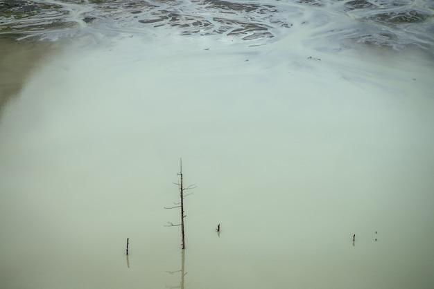 Atmosferyczny charakter tła z pnia drzewa w głębokim zielonym jeziorze powierzchni wody. martwe drzewo w błękitnej wodzie górskiego jeziora. minimalne tło natura ciemne turkusowe wody z pnia starego drzewa.