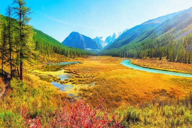 Atmosferyczny krajobraz jesień z bagnem i rzeką w górach. ścieżka wzdłuż bagna. piękny alpejski krajobraz z lazurową wodą w szybkiej rzece. moc majestatyczna przyroda wyżyn. góry ałtaj.