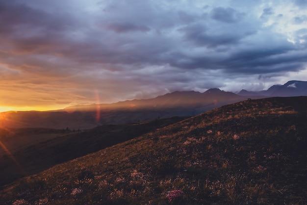 Atmosferyczny krajobraz z sylwetkami gór z różowymi kwiatami na wzgórzu na tle nieba świtu z pomarańczowymi promieniami słonecznymi i rozbłyskiem słonecznym. żywa sceneria z zachodem lub wschodem słońca o rozświetlonych kolorach.