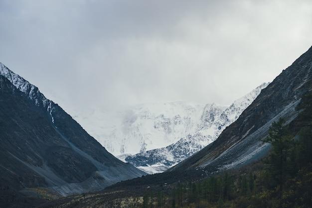 Atmosferyczny krajobraz z wielkimi górami śniegu pod zachmurzonym niebem. dramatyczna sceneria z drzewami na wzgórzu wśród ciemnych skał z widokiem na wysoką ośnieżoną ścianę górską z lodowcem w dolinie w pochmurną pogodę.