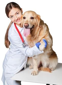 Atrakcyjna młoda lekarka ze śmiesznym psim pacjentem