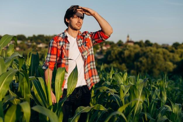 Atrakcyjny mężczyzna stoi na środku pola kukurydzy, patrząc w dal.