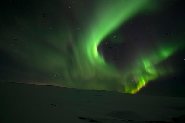 Aurora borealis. zorza polarna. teriberka. obwód murmański. rosja